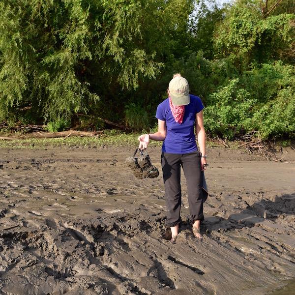 muddy-sandbars